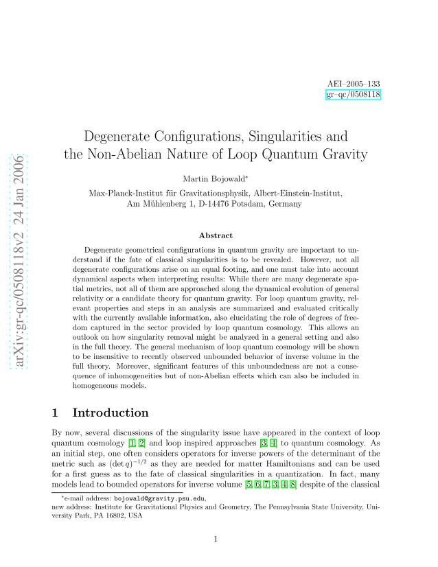 Martin Bojowald - Degenerate Configurations, Singularities and the Non-Abelian Nature of Loop Quantum Gravity